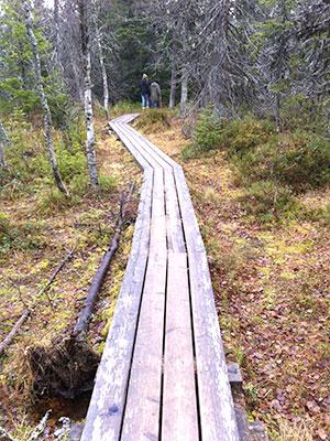 Meditation og mindfulness - Aase Grønbæk - Øje for velvære