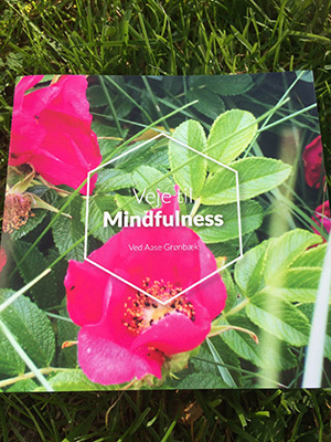 CD Mindfulness og meditation - Aase Grønbæk - guidet meditation